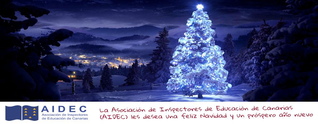 Navidad AIDEC